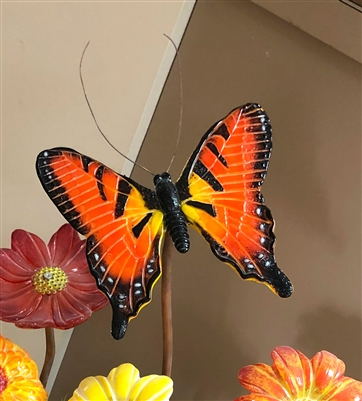 image-824909-large_butterfly_mold_2-9bf31.jpg